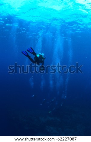 A photographer diver lost his group - stock photo