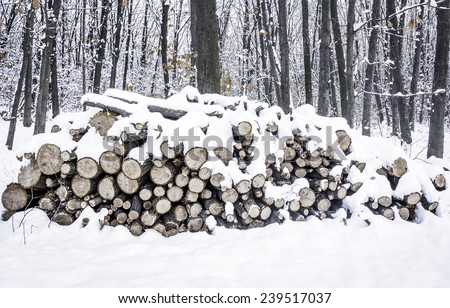 A pile of chopped wood stacked in the winter - stock photo