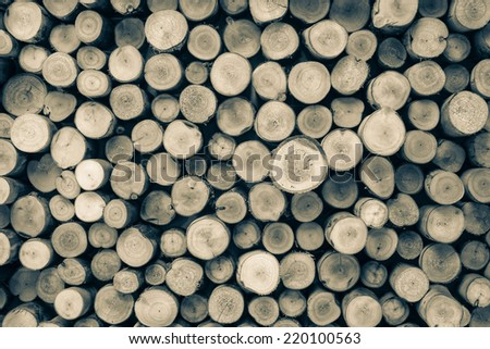 a pile of cut wood stump log texture - stock photo