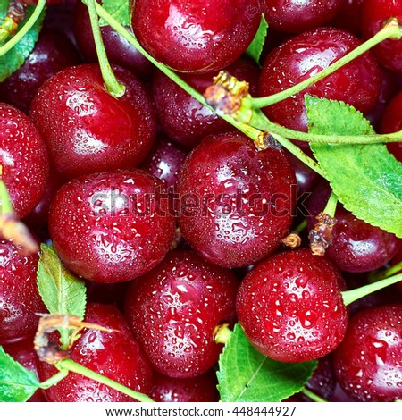 A pile of fresh fruits. Cherry fruit background - stock photo