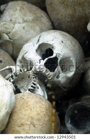 A pile of human bones - stock photo