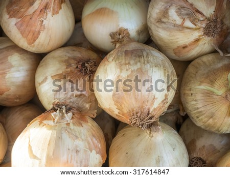 A pile of just harvested onions at a farm market. - stock photo