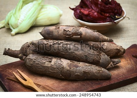 A pile of manioc (Lat. Manihot esculenta) on wooden board with corn and dried hot pepper in the back photographed with natural light (Selective Focus, Focus on the front manioc) - stock photo