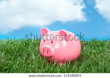 A pink piggybank in a meadow of green grass and a blue, puffy white cloud sky. - stock photo