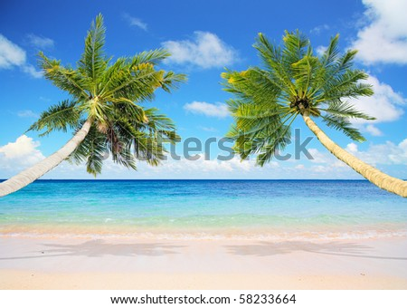 A place for a hammock - stock photo
