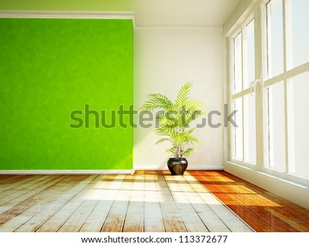 a plant in the shiny room - stock photo