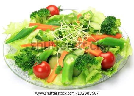 A plate of salad with broccoli, okras, cherry tomatoes, carrots, and cucumbers. - stock photo