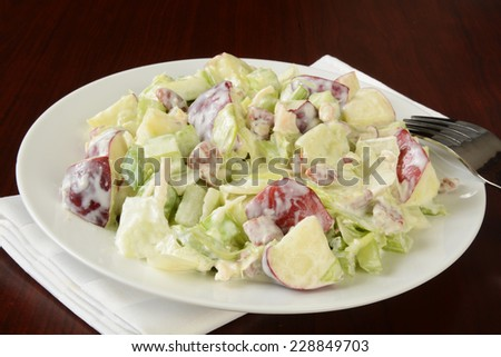 A plate of Waldorf salad on a simple wood background - stock photo