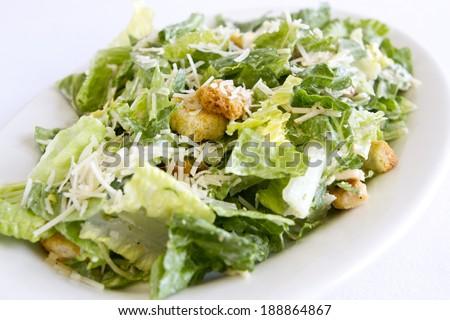 A plated caesar salad. - stock photo