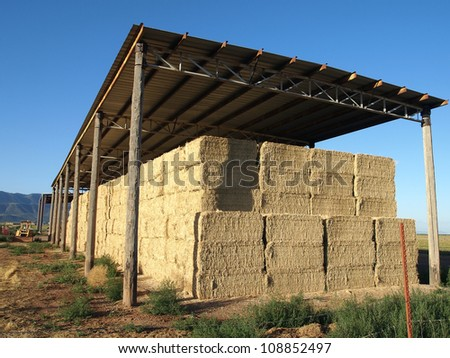 A pole barn in a rural area filled with bales of alfalfa. - stock photo