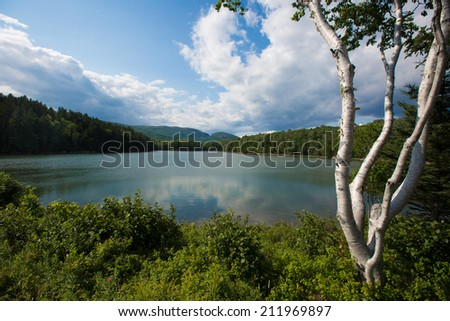 A pond in Acadia National Park, Maine, USA - stock photo