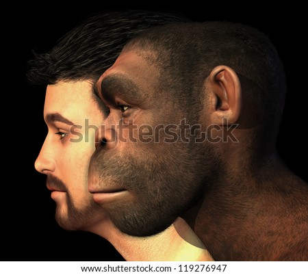 A portrait of a modern human and a Homo Erectus man side-by-side - 3D render with digital painting. - stock photo