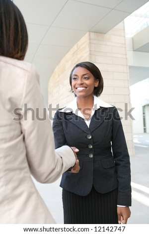 A pretty african american business woman shaking hands - stock photo