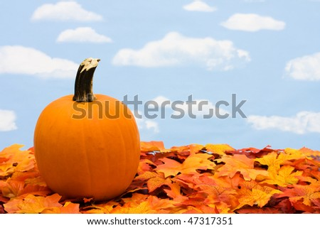 A pumpkin sitting on fall leaves on a sky background, scarecrow - stock photo