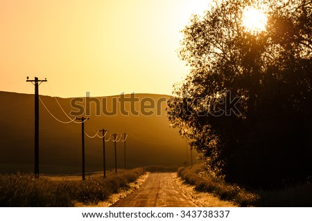 A quiet country road is painted a wonderful hue of orange in the day's last light. - stock photo