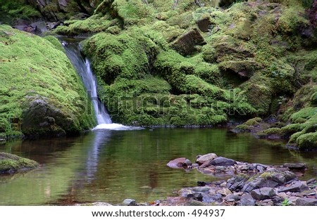 A quiet pool in the woods with waterfall - stock photo