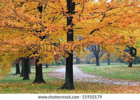 A Quiet Walking Path Through The Park On A Rainy Day In Autumn, Sharon Woods, Southwestern Ohio - stock photo