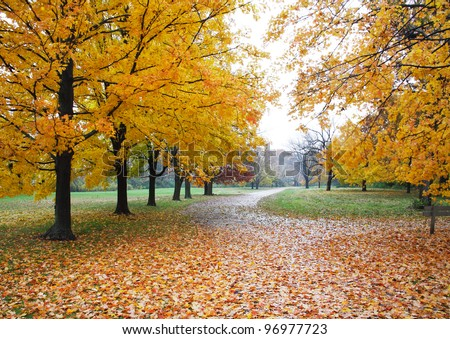 A Quiet Walking Path Through The Park On A Rainy Day In Autumn, Sharon Woods, Southwestern Ohio, USA - stock photo