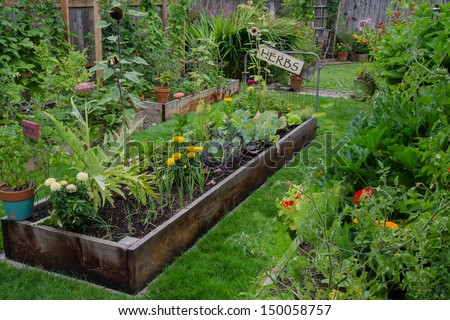 A raised bed filled with herbs and vegetables is nestled in the center of two other narrow gardens. A rustic, delightful sign adds an artistic accent. - stock photo