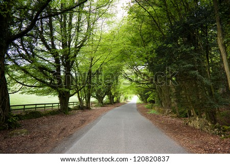 A raod in Cotswold, United Kingdom - stock photo