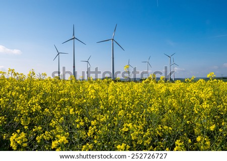 A rapeseed field with wind engines in the back - stock photo