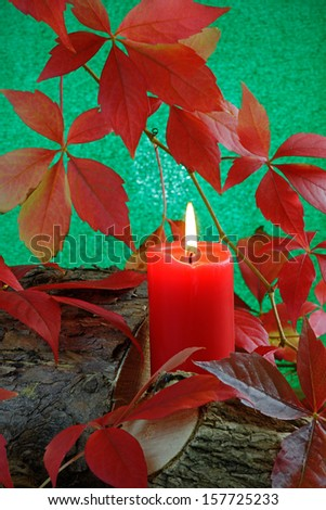 A red candle burning on logs among Virginia Creeper leaves in Autumn - stock photo
