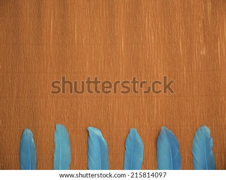 A red crepe paper background with 6 blue feathers at the bottom, laying vertically and aligned - stock photo