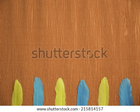 A red crepe paper background with 6 feathers of 2 different colors at the bottom, laying vertically and aligned - stock photo
