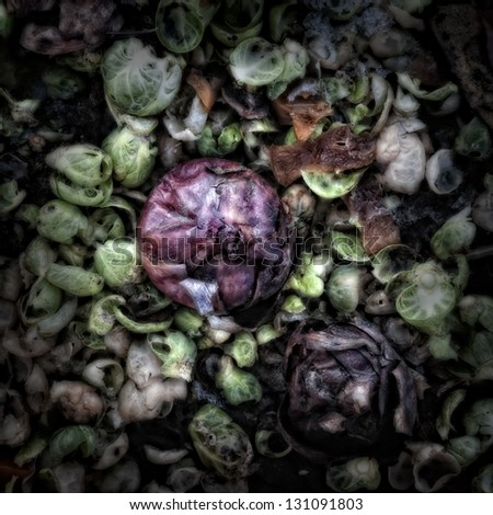 A red onion amongst vegetable waste on a Compost Heap/Artistically alienated to create a grungy somber atmosphere. - stock photo