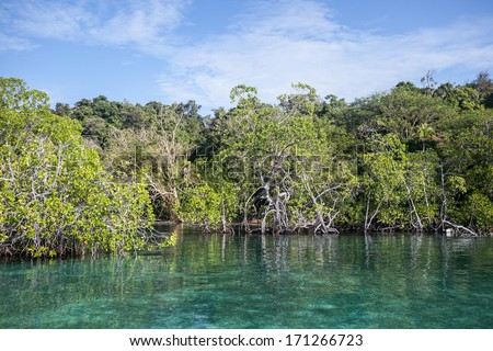 A remote island in Raja Ampat, Indonesia is fringed by mangrove forest. Mangroves serve as nurseries for many marine species. This region is extremely diverse both above and below the waterline. - stock photo