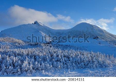 A ridgeline and the rime on trees of the evening - stock photo