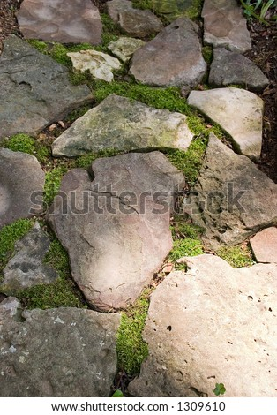 A rock path in this garden with moss growing between the rocks - stock photo