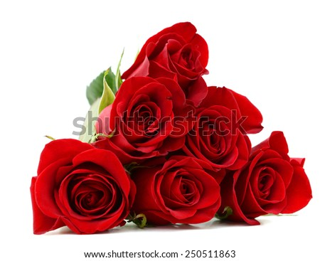 A rose gift on decorating - stock photo