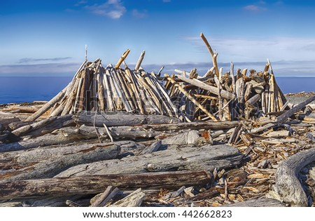 A rough beach shelter made out of driftwood and logs resembles a long house on the shores of Puget Sound in Washington State. - stock photo