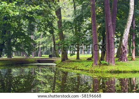 A rural small lake and a green forest - stock photo
