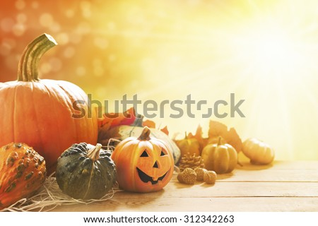 A rustic autumn still life with pumpkins, a small Jack O'Lantern and golden leaves on a wooden surface. Bright sunlight coming in from behind. - stock photo