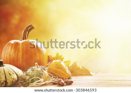 A rustic autumn still life with pumpkins and golden leaves on a wooden surface. Bright sunlight coming in from behind. - stock photo