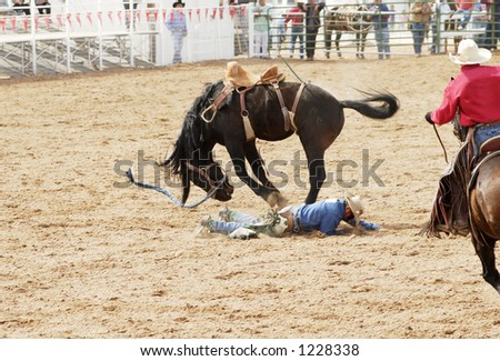 A saddle bronc rider is bucked off during  a rodeo. - stock photo