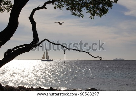 A sailboat at dusk in Bonaire. - stock photo