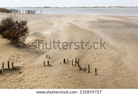A scenic sandstorm near Salin-de-Giraud - France - stock photo