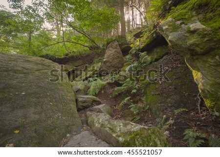 A scenic view of a hiking trail in the Ice Glen region of the Berkshire Mountains in Stockbridge, Massachusetts. - stock photo