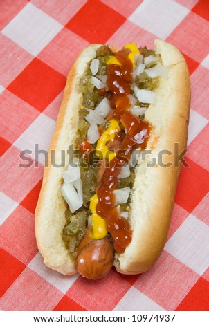 A scrumptious hotdog is ready to eat after a nice barbecue on a hot summer day - stock photo