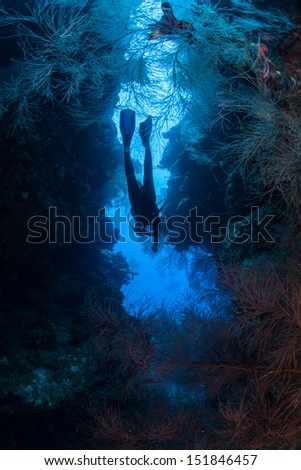 A scuba diver explores a diverse coral reef off Grand Cayman Island in the Caribbean where cracks and crevices provide shadowed habitats for various marine species to thrive. - stock photo
