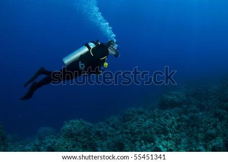 a scuba diver profile swimming on reef - stock photo
