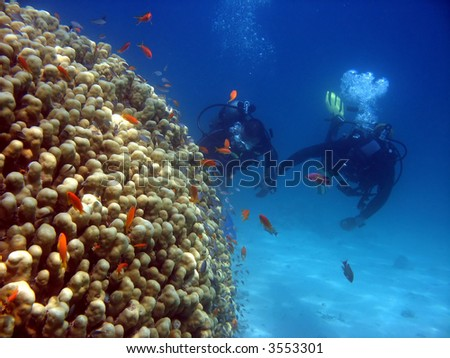 A scuba instructor gives a tourist his first dive - stock photo