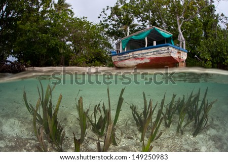 A seagrass bed fringes a beach where a shipwreck has washed ashore in the Solomon Islands.  This area is found within the Coral Triangle and is high biological diversity. - stock photo