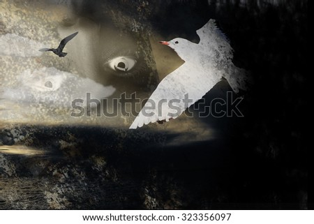 a seagull, bird flying in black and yellow surreal sky with a woman face  - stock photo