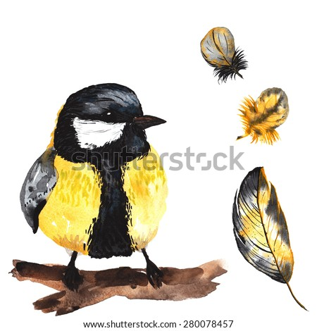A set of hand-drawn watercolor containing bird Parus and feathers - stock photo