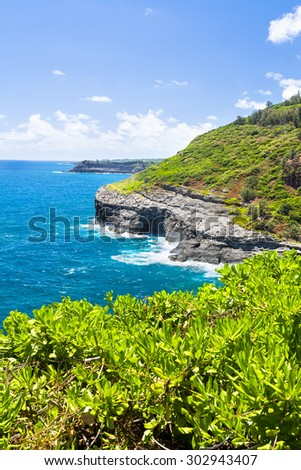 A shot taken from the Kilauea lighthouse of the rugged coastal cliffs that supports a seabird habitat and sanctuary. - stock photo