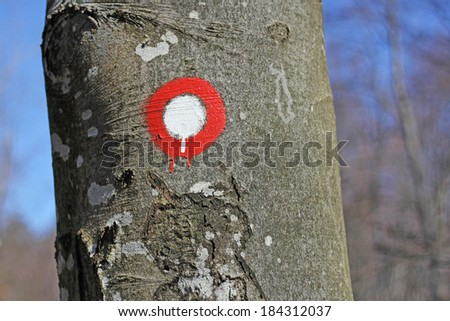 A sign post pointing for hiking tourism in a forest  - stock photo